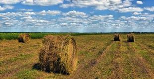 Τομέας αγροτών με τα δέματα σανού Στοκ Εικόνες