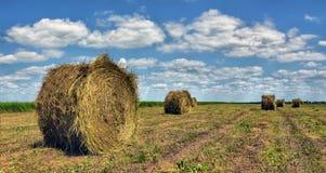 Τομέας αγροτών με τα δέματα σανού Στοκ φωτογραφία με δικαίωμα ελεύθερης χρήσης