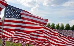 Τομέας αμερικανικών σημαιών Στοκ εικόνες με δικαίωμα ελεύθερης χρήσης
