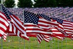 Τομέας αμερικανικών σημαιών Στοκ Φωτογραφία