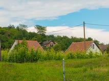 Τομέας αμπελώνων σε ένα σπίτι βουνοπλαγιών και Τύπου Στοκ φωτογραφία με δικαίωμα ελεύθερης χρήσης