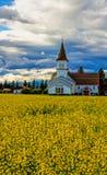Τομέας και εκκλησία Canola Στοκ Εικόνες