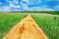 Τομέας με τη σίκαλη και το δρόμο στοκ εικόνες με δικαίωμα ελεύθερης χρήσης