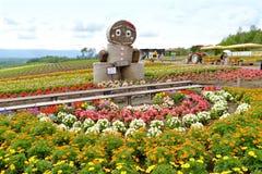 Τομέας λουλουδιών στο Hokkaido, Ιαπωνία Στοκ Εικόνες