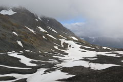 Τομέας πάγου της Αλάσκας Seward Harding στοκ εικόνες