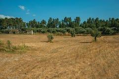 Τομέας που καλύπτεται από το ξηρό άχυρο και την παλαιά αγροικία στοκ φωτογραφία με δικαίωμα ελεύθερης χρήσης