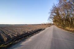 Τομέας πρόσφατο φθινόπωρο Στοκ Εικόνες