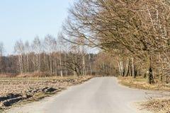 Τομέας πρόσφατο φθινόπωρο Στοκ εικόνες με δικαίωμα ελεύθερης χρήσης