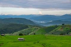 Τομέας ρυζιού, αγροτική θέα βουνού με το όμορφο τοπίο στοκ φωτογραφίες με δικαίωμα ελεύθερης χρήσης