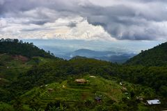 Τομέας ρυζιού βημάτων σε βόρειο της Ταϊλάνδης Στοκ Φωτογραφία