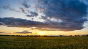Τομέας ρυζιού με το ηλιοβασίλεμα και τα σύννεφα Στοκ Φωτογραφία