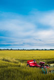 Τομέας ρυζιού με το κόκκινο τρακτέρ Στοκ φωτογραφία με δικαίωμα ελεύθερης χρήσης