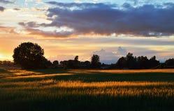 Τομέας στην επαρχία Στοκ εικόνες με δικαίωμα ελεύθερης χρήσης