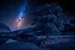 Τομέας στη λίμνη περιοχής τη νύχτα με τα αστέρια Στοκ εικόνες με δικαίωμα ελεύθερης χρήσης