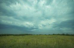 Πράσινος μπλε ουρανός χλόης Στοκ Εικόνα