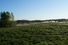 Τομέας το πρωί Στοκ Φωτογραφία