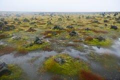 Τομέας των πέτρινων τύμβων σε Laufskalavarda, Ισλανδία Στοκ Φωτογραφίες