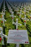 Τομέας των σταυρών για την ημέρα Anzac Στοκ Εικόνες