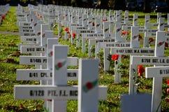 Τομέας των σταυρών για την ημέρα Anzac Στοκ εικόνα με δικαίωμα ελεύθερης χρήσης
