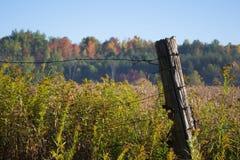 Τομέας χώρας στο φράκτη καλωδίων φθινοπώρου με την ξύλινη θέση Στοκ Φωτογραφία
