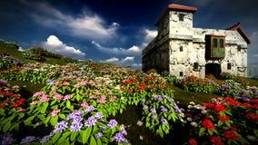Τομέας χλόης με τους κυλώντας λόφους και τα wildflowers στην Ιρλανδία φιλμ μικρού μήκους