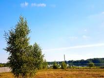 Τομέας Στοκ φωτογραφία με δικαίωμα ελεύθερης χρήσης