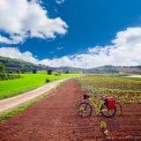Τομείς αμπελώνων Λα Rioja με τον τρόπο Αγίου James στοκ εικόνες με δικαίωμα ελεύθερης χρήσης