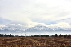 Τομείς γεωργίας κοντά σε Issyk, Αλμάτι στοκ φωτογραφία