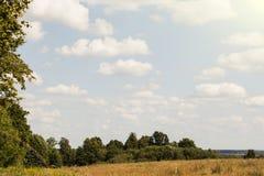 Τομείς επαρχίας το φθινόπωρο με τα δάση στο υπόβαθρο και τα σύννεφα ανωτέρω Στοκ Φωτογραφία