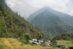 Τομείς και μικρά ξύλινα σπίτια στο Νεπάλ Στοκ φωτογραφία με δικαίωμα ελεύθερης χρήσης