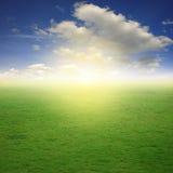 Τομείς και μπλε ουρανός χλόης μια συμπαθητική ημέρα Στοκ Εικόνες
