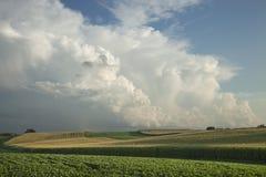 Τομείς καλαμποκιού και σόγιας κάτω από τα δραματικά σύννεφα Στοκ φωτογραφία με δικαίωμα ελεύθερης χρήσης