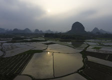 Τομείς καλλιέργειας κοντά σε Yangshuo Κίνα Στοκ Φωτογραφία