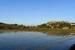 Τομείς ρυζιού και χωριό του velho Montemor ο Στοκ φωτογραφία με δικαίωμα ελεύθερης χρήσης
