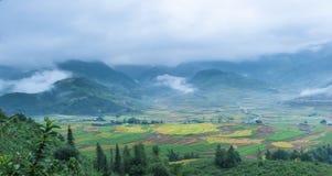 Τομείς ρυζιού με τα βουνά και τα σύννεφα Στοκ Εικόνα