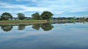 Τομείς ρυζιού πρίν φυτεύει το ρύζι στοκ φωτογραφίες