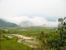 Τομείς ρυζιού Sa PA, Βιετνάμ στοκ εικόνα