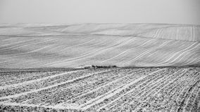 Τομείς Ostroda Mazury που καλύπτονται στο χιόνι στην Πολωνία Στοκ Φωτογραφίες