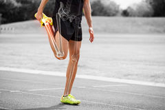 Τονισμένα κόκκαλα του τεντώματος ατόμων αθλητών στη διαδρομή αγώνων Στοκ Φωτογραφία