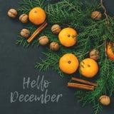 Τονισμένα tangerines σύνθεσης Χριστουγέννων Δεκεμβρίου καρτών γειά σου, τα καρύδια, τα ραβδιά κανέλας και το φυσικό κυπαρίσσι δια Στοκ Εικόνα