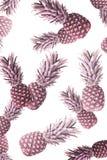 τονισμένη εικόνα των φυσικών ώριμων ανανάδων στοκ φωτογραφίες