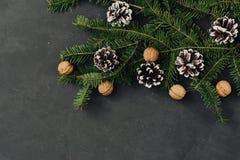 Τονισμένο υπόβαθρο διακοπών Χριστουγέννων σκοτεινό, φυσικές διακοσμήσεις που τίθενται σε μια σύνθεση με τους κομψούς κλάδους, pin Στοκ Φωτογραφίες