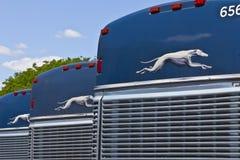 Τον Ιούνιο του 2016 της Ινδιανάπολης - Circa: Greyhound λεωφορεία Greyhound προσφέρει τη Inter-City υπηρεσία σε πάνω από 2.700 πρ στοκ εικόνες με δικαίωμα ελεύθερης χρήσης