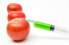 Τοξικές χημικές ουσίες στις ντομάτες Στοκ εικόνα με δικαίωμα ελεύθερης χρήσης