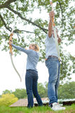 Τοξότες που εκπαιδεύουν με το τόξο Στοκ Εικόνες