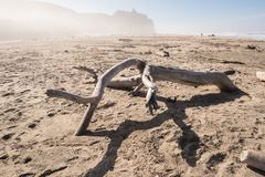 Τοπία από την Καλιφόρνια coasr, ΗΠΑ Στοκ Εικόνες