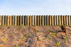 Τοπία κηπουρικής Πολωνών κούτσουρων φρακτών Στοκ Εικόνες