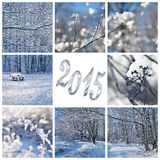 τοπία του 2015, χιονιού και χειμώνα Στοκ Εικόνες