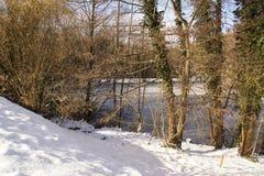 Τοπία χειμερινή - δέντρα, χιόνι και ice-cold λίμνη - Γαλλία Στοκ φωτογραφία με δικαίωμα ελεύθερης χρήσης