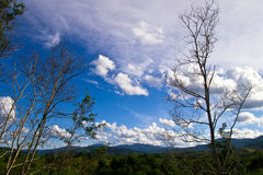 Τοπίο άνοιξη με την πράσινη χλόη στα λιβάδια και τα σύννεφα στο μπλε ουρανό Στοκ Φωτογραφίες